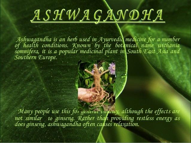 Ashwagandha anxiety research paper