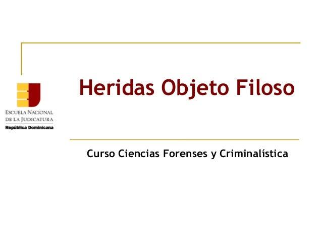 Heridas Objeto Filoso Curso Ciencias Forenses y Criminalística