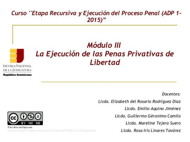 Módulo III La Ejecución de las Penas Privativas de Libertad Curso ''Etapa Recursiva y Ejecución del Proceso Penal (ADP 1- ...