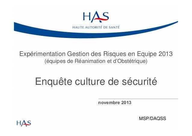 Expérimentation Gestion des Risques en Equipe 2013 (équipes de Réanimation et d'Obstétrique)  Enquête culture de sécurité ...