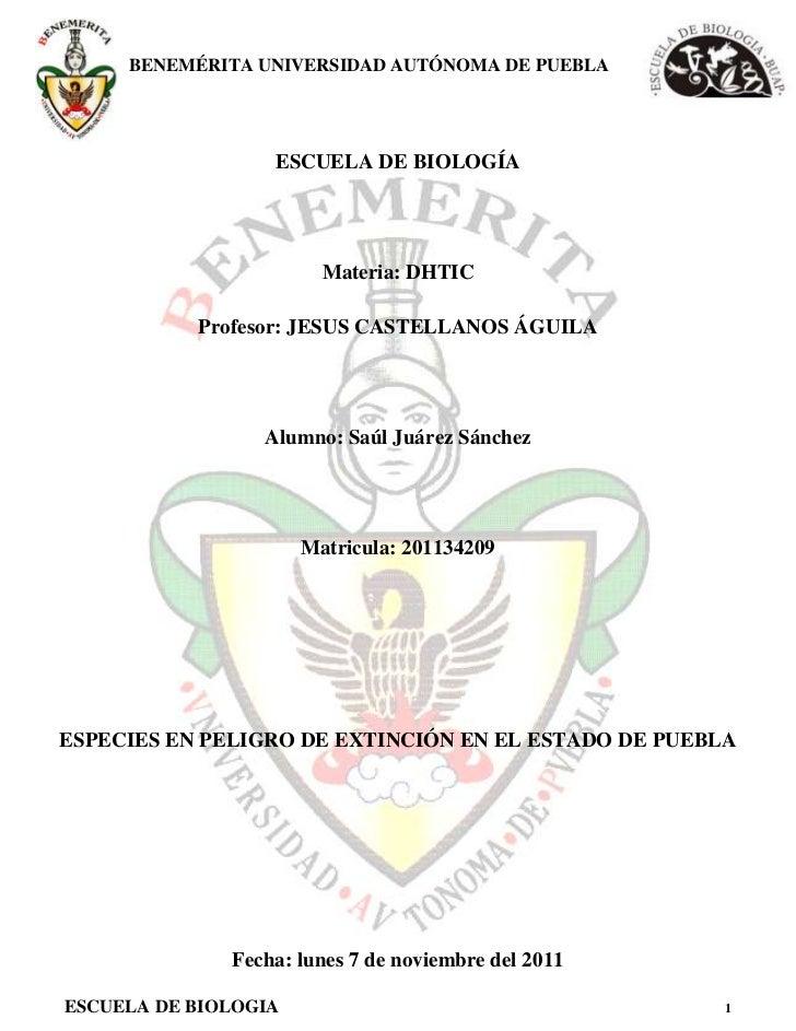 BENEMÉRITA UNIVERSIDAD AUTÓNOMA DE PUEBLA                  ESCUELA DE BIOLOGÍA                        Materia: DHTIC      ...