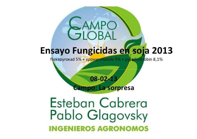 Ensayo Fungicidas en soja 2013 fluxapyroxad 5% + epoxyconazole 5% + pyraclostrobin 8,1% 08-02-13 Campo: La sorpresa