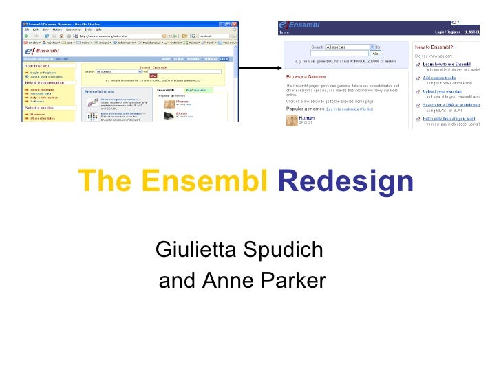 The Ensembl   Redesign Giulietta Spudich  and Anne Parker