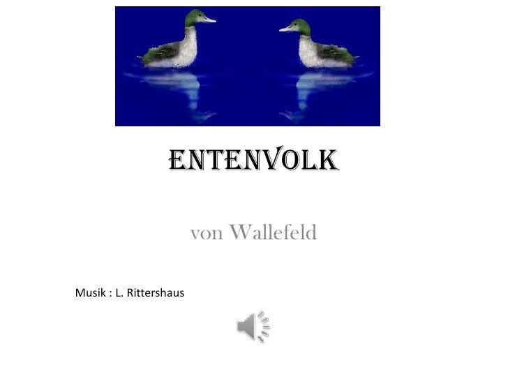 Entenvolk                         von WallefeldMusik : L. Rittershaus