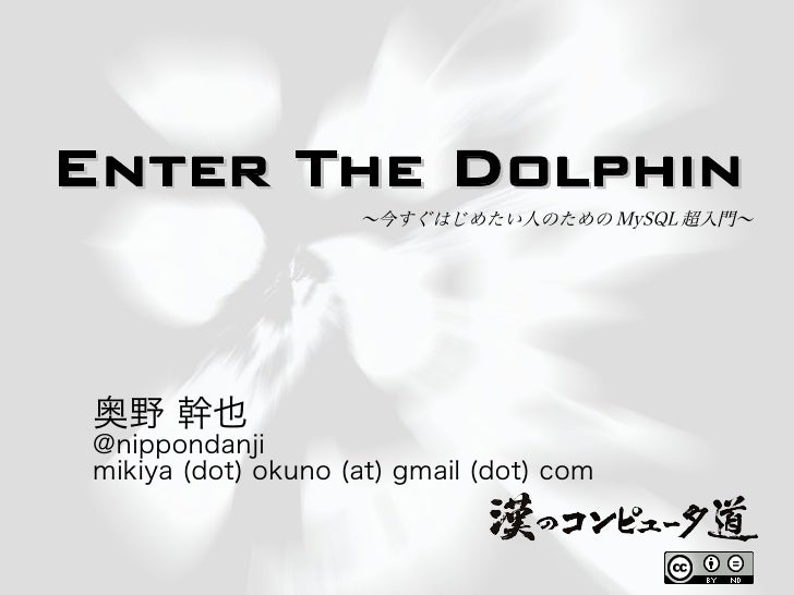Enter the-dolphine