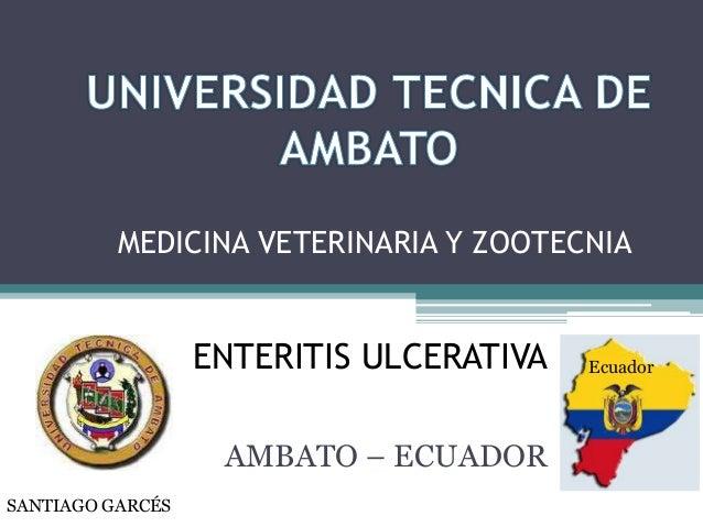 MEDICINA VETERINARIA Y ZOOTECNIA  ENTERITIS ULCERATIVA AMBATO – ECUADOR SANTIAGO GARCÉS  Ecuador
