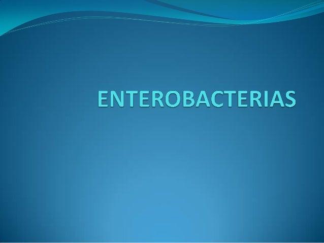 ENTEROBACTERIAS40 géneros. 150 especies. 20 especies responsables de patología humana. Distribuidas en suelo, agua, alimen...