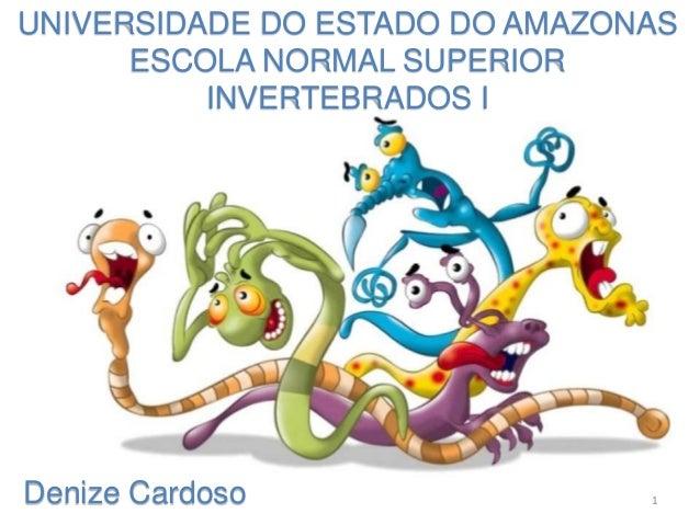 UNIVERSIDADE DO ESTADO DO AMAZONAS ESCOLA NORMAL SUPERIOR INVERTEBRADOS I Denize Cardoso 1