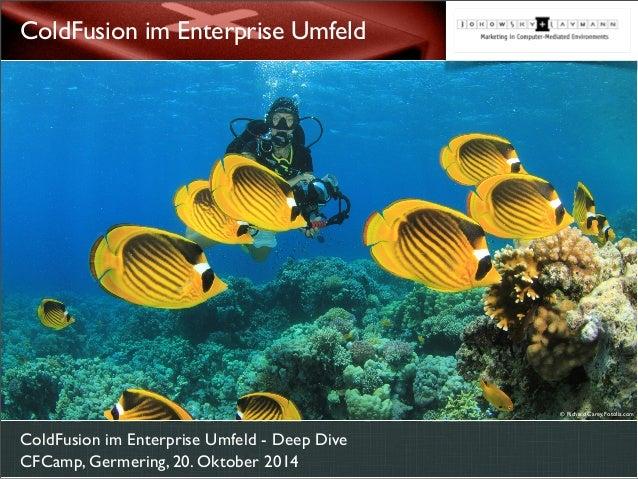 ColdFusion im Enterprise Umfeld  ColdFusion im Enterprise Umfeld - Deep Dive  CFCamp, Germering, 20. Oktober 2014  © Richa...