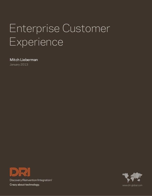 Enterprise CustomerExperienceMitch LiebermanJanuary 2013