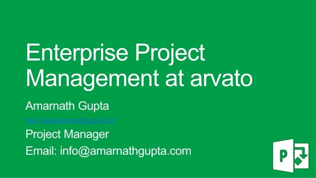 Enterprise Project Management using Microsoft Project