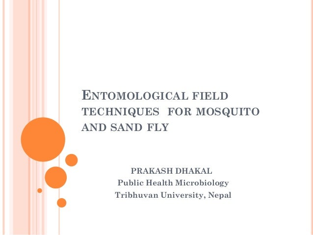 Entomological field techniques for mosquito and sandfly
