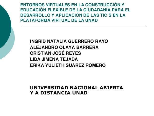 ENTORNOS VIRTUALES EN LA CONSTRUCCIÓN YEDUCACIÓN FLEXIBLE DE LA CIUDADANÍA PARA ELDESARROLLO Y APLICACIÓN DE LAS TIC S EN ...