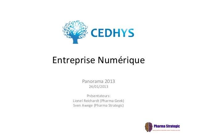 Entreprise numerique panorama 2013 cedhys