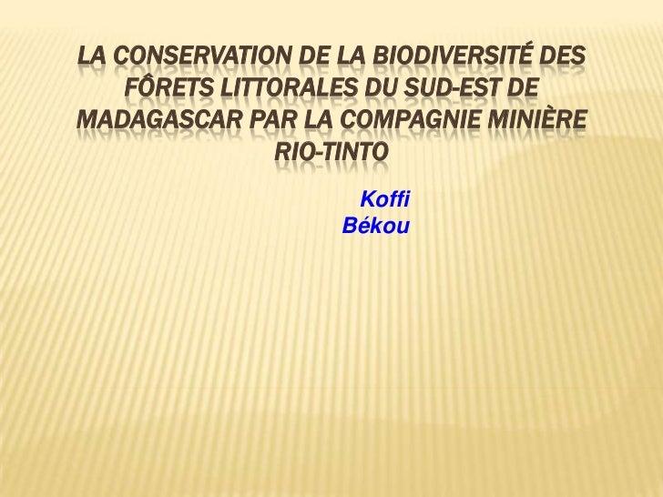 Biodiversté Madagascar