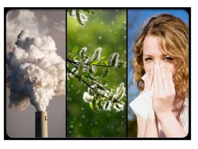 Environment and asthma Eman Youssef Medical research institute Immunology department