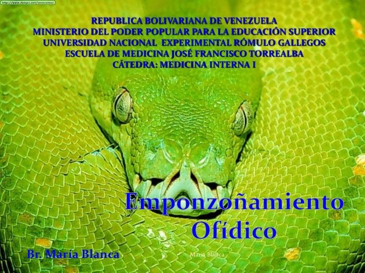 REPUBLICA BOLIVARIANA DE VENEZUELA<br />MINISTERIO DEL PODER POPULAR PARA LA EDUCACIÓN SUPERIOR<br />UNIVERSIDAD NACIONAL ...