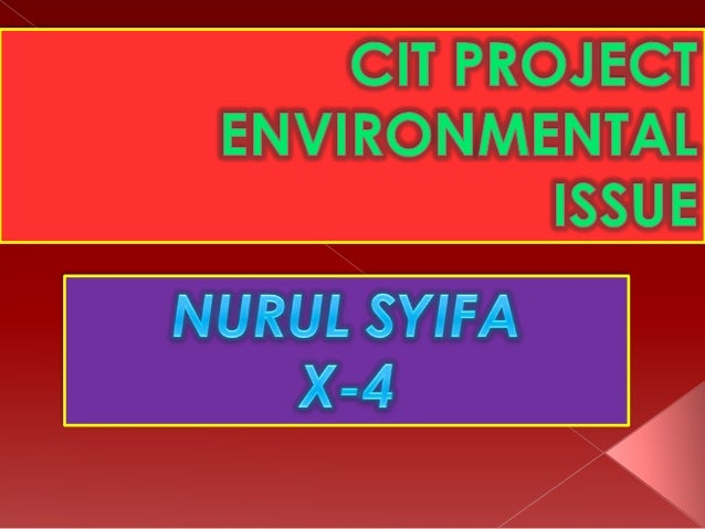 Enviromental issue cit project