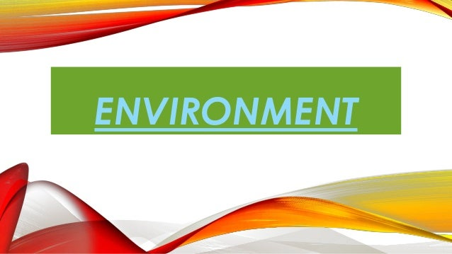 Environment with ms office 2013