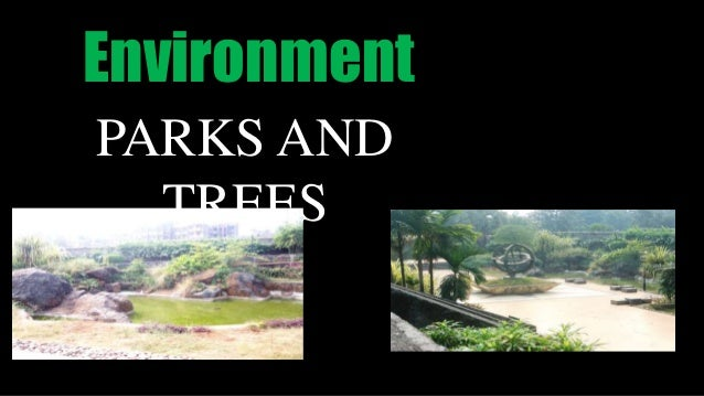 Environment PARKS AND TREES