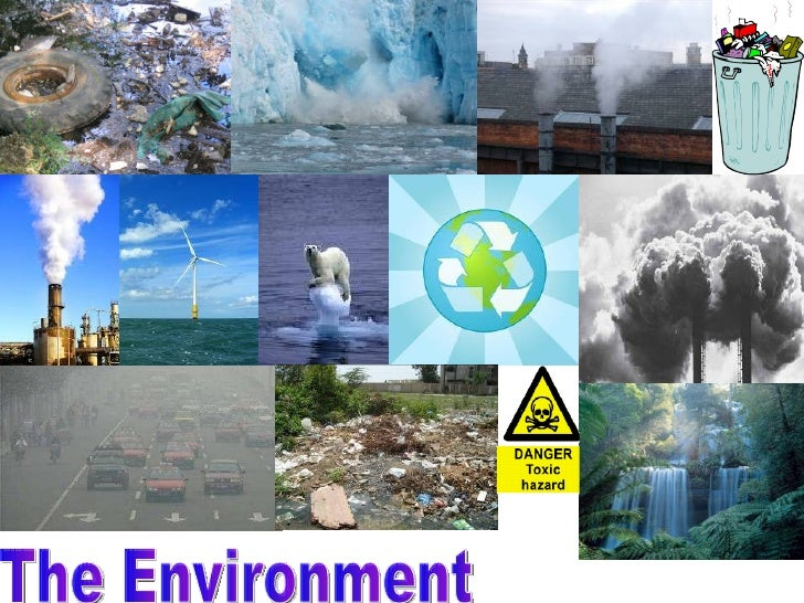 Environment Collages G2 Presentation on Living And Non Things