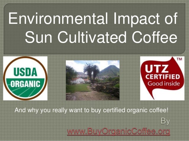 Environmental Impact of Sun Cultivated Coffee And why you really want to buy certified organic coffee!