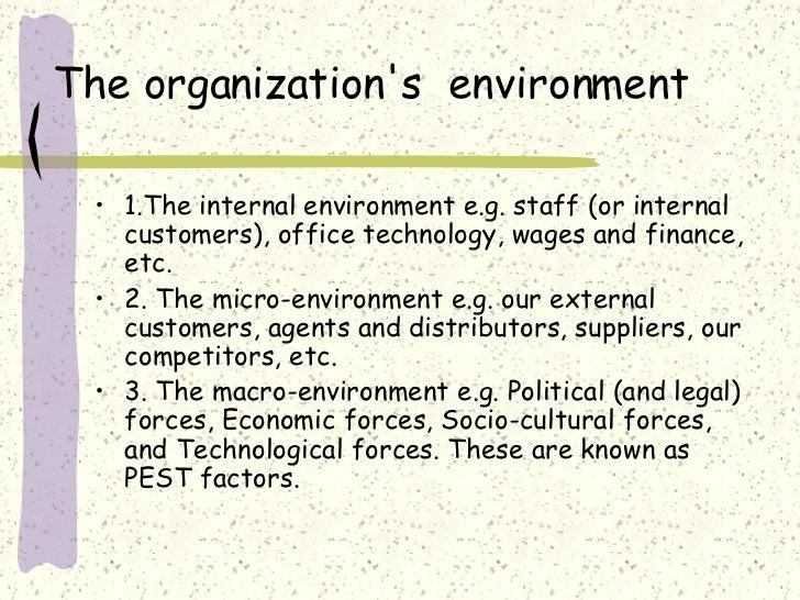 Explain the internal marketing environmental factors for an electrical manufacturer?
