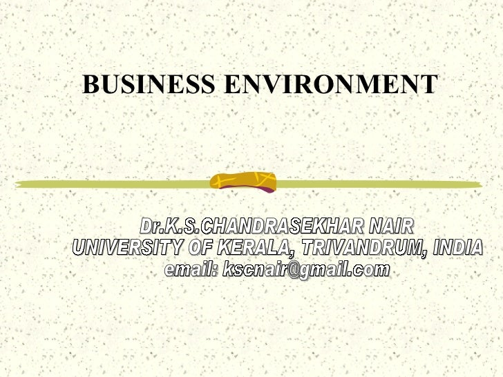 environmental influences in business