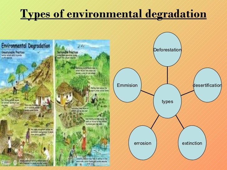consequences of environmental regulations essay Unfunded mandates and economic impacts environmental sciences essay citizens began to realize the consequences of the epa uses regulations and economic.