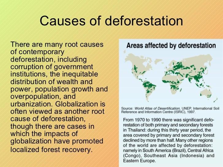 Urbanization and Environmental Degradation Essay