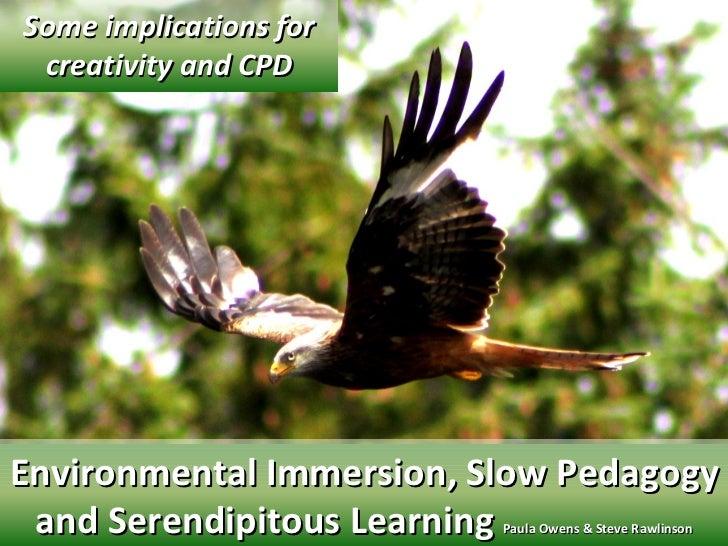 Environmental immersion, slow pedagogy & serendipitous learning