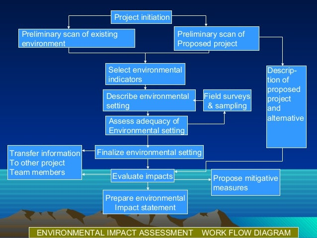 essay environmental impact assessment An environmental impact assessment of the work written by our professional essay writers what are the main problems of environmental impact assessment (eia.