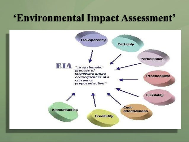 Environmental Assessments?! How do I write one?!?