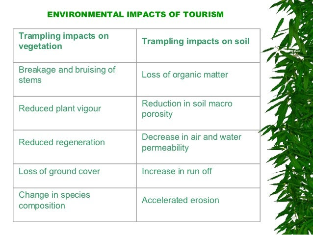 environmental impact on tourism in canada Impacts in canada regions across environment north east central the social, economic and cultural health of central canada is strongly migration of the mountain pine beetle and record-setting forest fires have had adverse impacts on the forestry and tourism industries - impacts which.