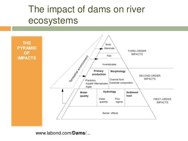 environmental impacts on hydro power essay Eia report on hydropower project sunkoshi hydro power have led to different environmental impacts on the above mentioned ecosystems to.