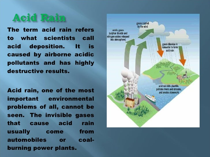 environmental problem term paper Water pollution is an environmental issue that environment destruction caused by humans is a global problem environmental impact of paper environmental.