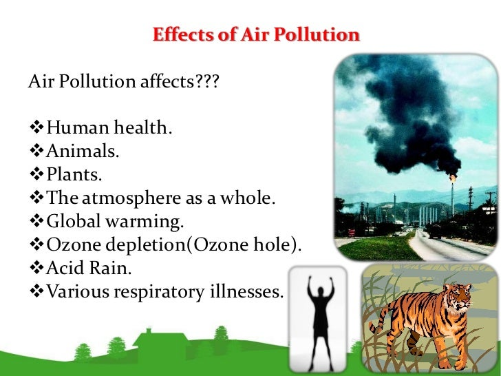 the effect of air pollution essay Effects of pollution essay, buy custom effects of pollution essay paper cheap, effects of pollution essay paper sample, effects of pollution essay.