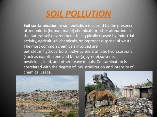 land pollution and its effects What we don't see is the final death of a flower or the last of its  every form of land pollution kills off the habitats of land  and-effects-of-land.