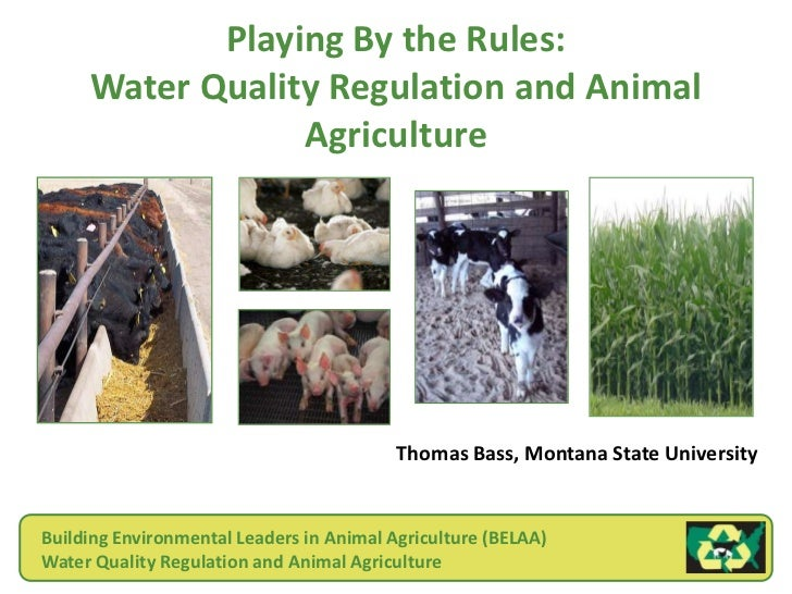 Playing By the Rules:     Water Quality Regulation and Animal                 Agriculture                                 ...