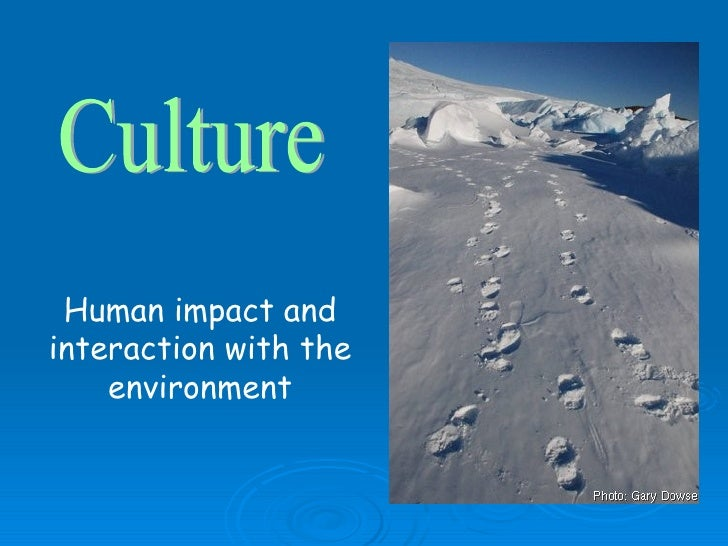 In What Ways Can Environmental Conditions Affect Natural Selection