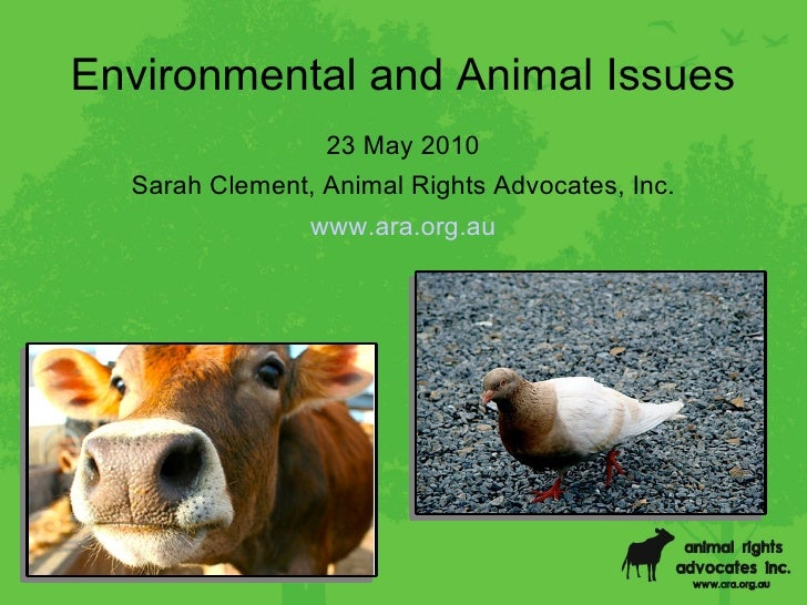 Environment and Animal Rights Presentation