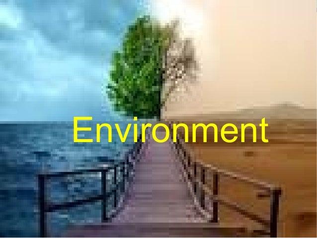 Environment atenea&ines