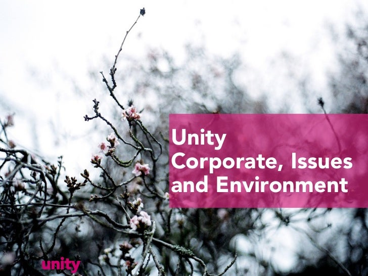 Unity        Corporate, Issues        and Environmentunity
