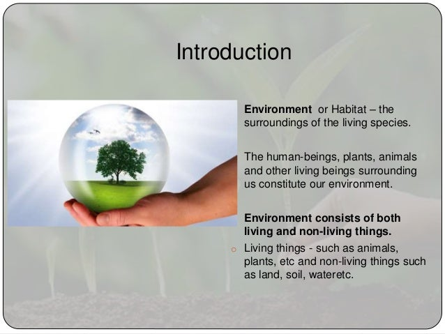 Write my essays about environmental protection