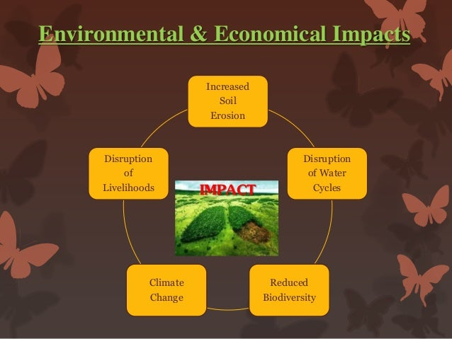 an analysis of the effects of deforestation in the climate and environment A global analysis of deforestation due to biofuel development yan gao margaret skutsch and contributes to global climate change mitigation.