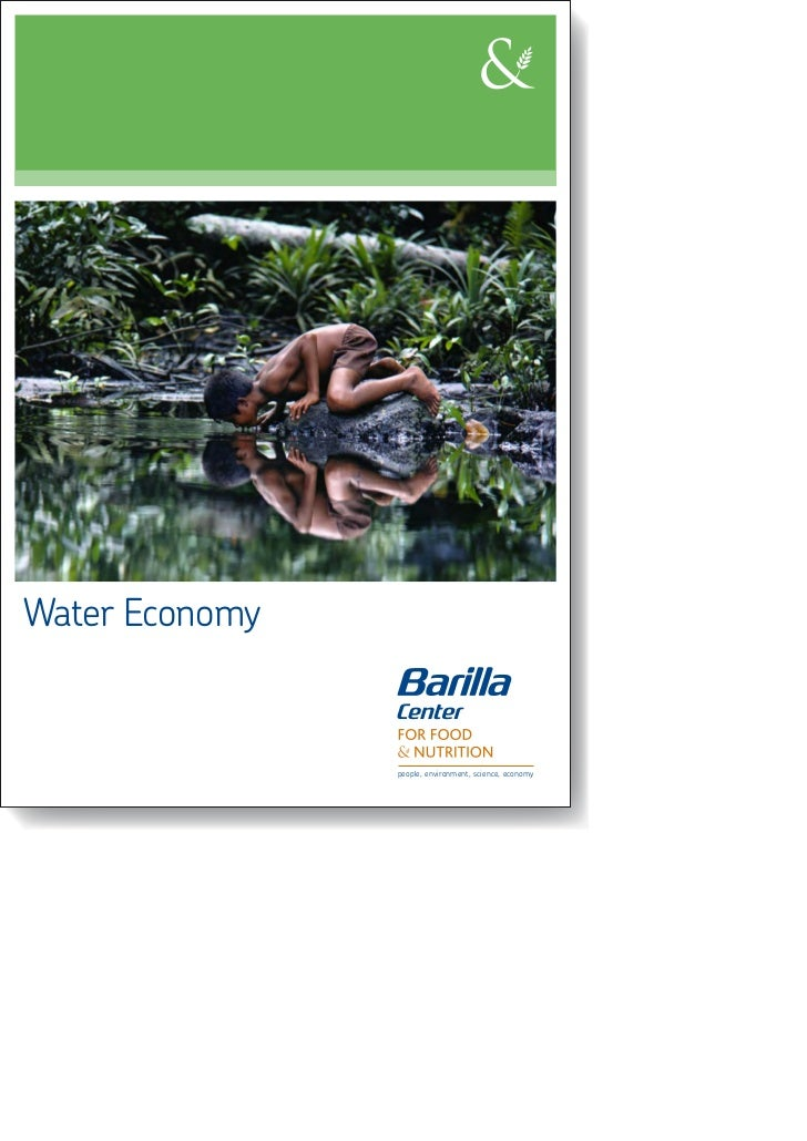 Position Paper: Water Economy (EN)