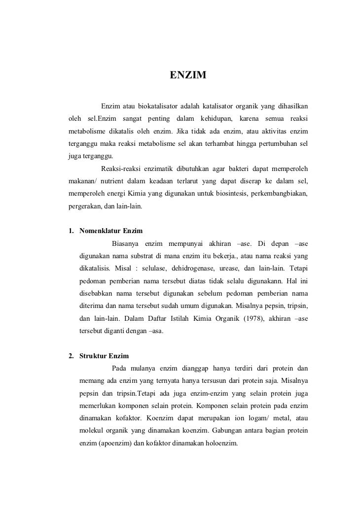 Enzim (1)