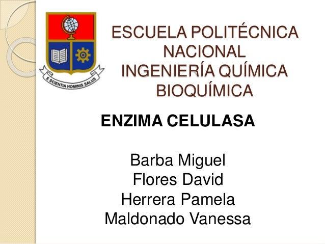 ESCUELA POLITÉCNICA NACIONAL INGENIERÍA QUÍMICA BIOQUÍMICA ENZIMA CELULASA Barba Miguel Flores David Herrera Pamela Maldon...