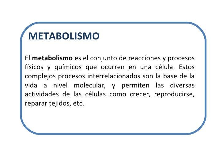 El  metabolismo  es el conjunto de reacciones y procesos físicos y químicos que ocurren en una célula. Estos complejos pro...
