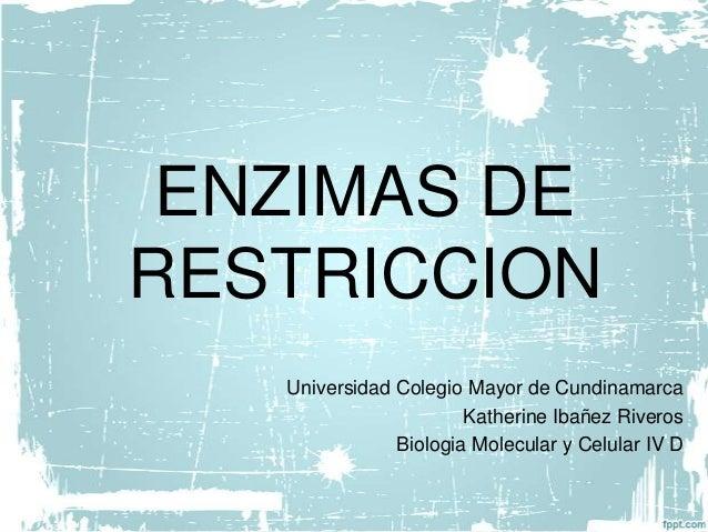 ENZIMAS DE RESTRICCION Universidad Colegio Mayor de Cundinamarca Katherine Ibañez Riveros Biologia Molecular y Celular IV D